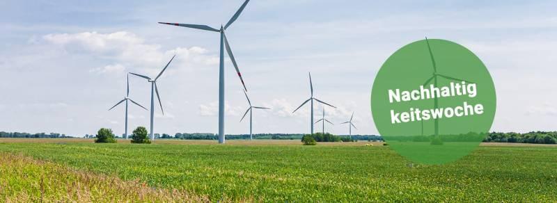media/image/panista-nachhaltigkeitswoche-ohne-CTA.jpg